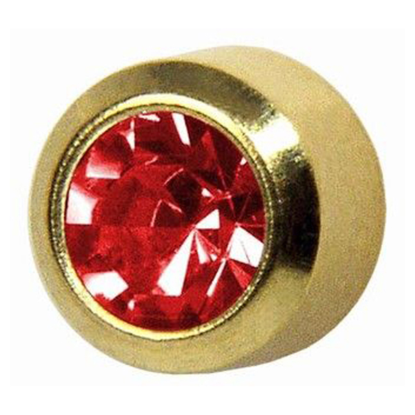 24ct gold plate-ruby clawset - s107y